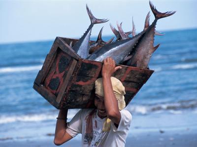Imaxe do pescador e as súas capturas.